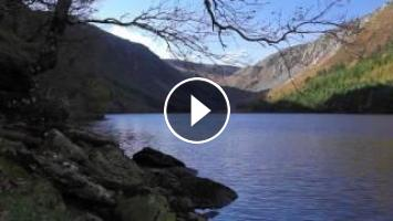 Nature Sounds-relax Forest Birdsong-Relaxing sound of Lapping Water